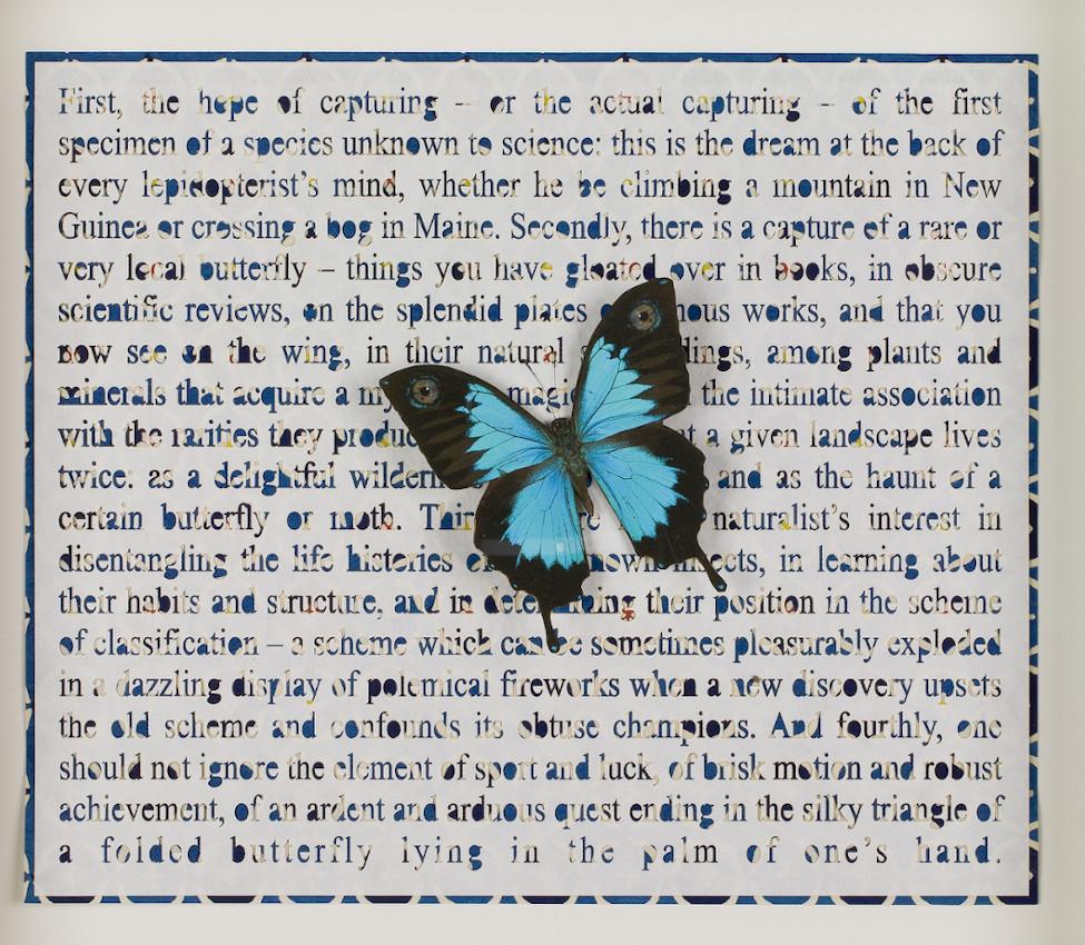 Jane Hammond (American, b. 1950), Four Ways to Blue (detail), 2006