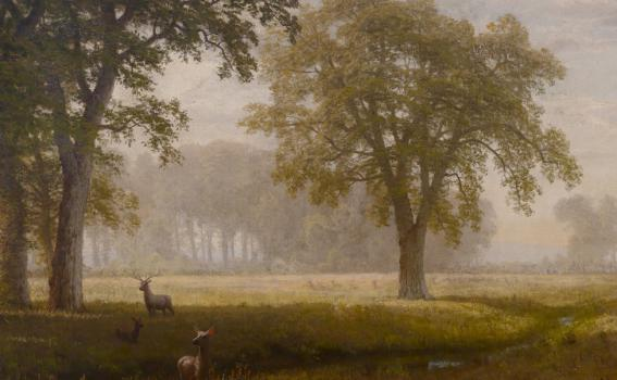 Albert Bierstadt (American, born in Germany, 1830-1902), Tuolomne Meadows