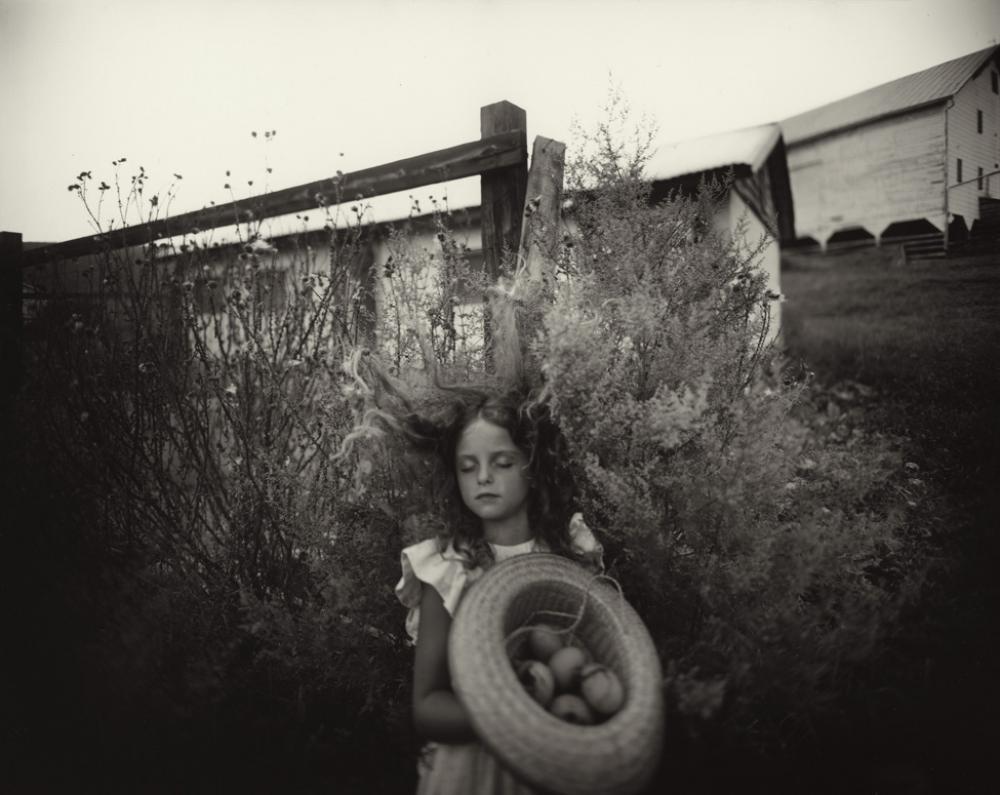 Sally Mann (American, b. 1951), Yard Eggs, 1991