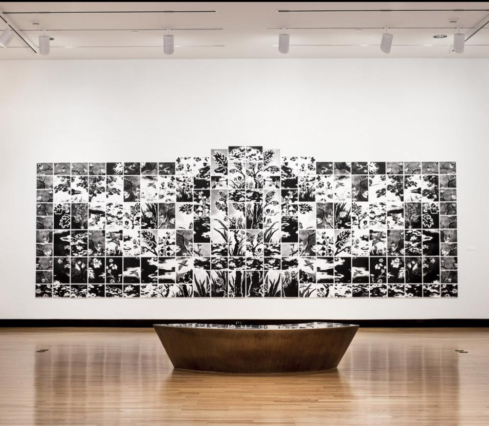 Installation view of Lorna Bieber, Eden