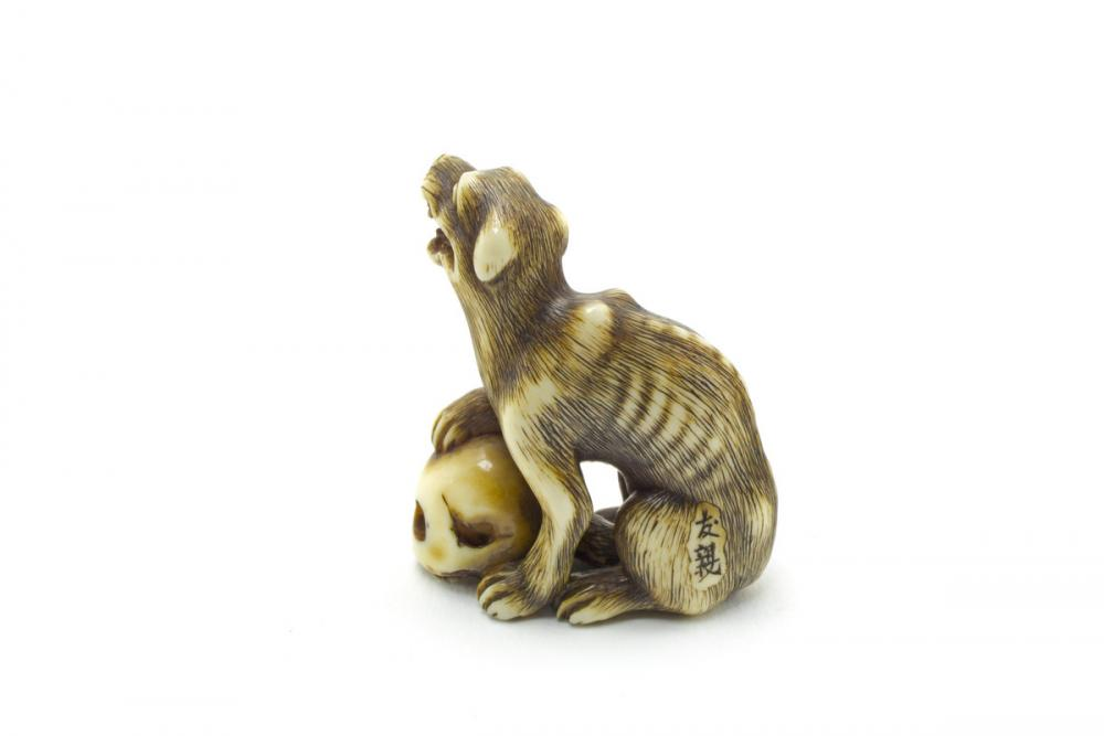 Tomochika, Dog and skull