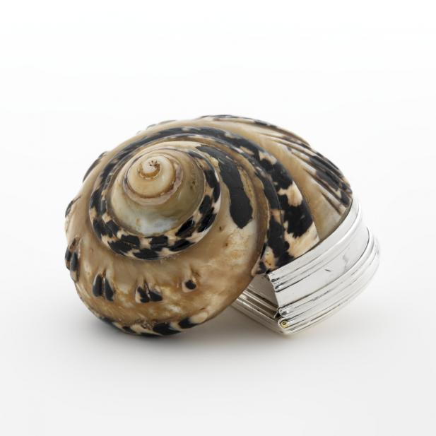 Phipps, Thomas; Robinson, Edward; Snail shell snuffbox