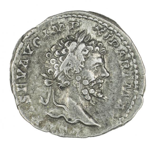 Roman, Denarius of Septimius Severus, recto