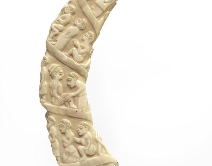 Unknown (possibly Vili; Loango Coast), Carved hippopotamus tooth, 19th century